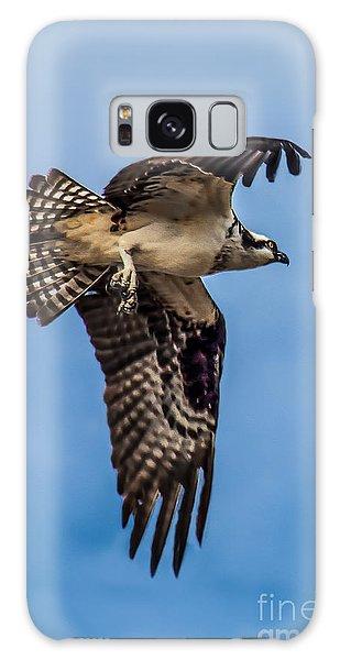 Haybale Galaxy Case - Osprey Flying Away by Robert Bales