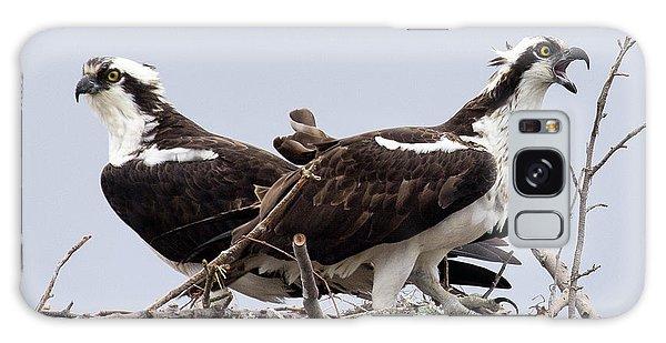 Osprey Pair Galaxy Case