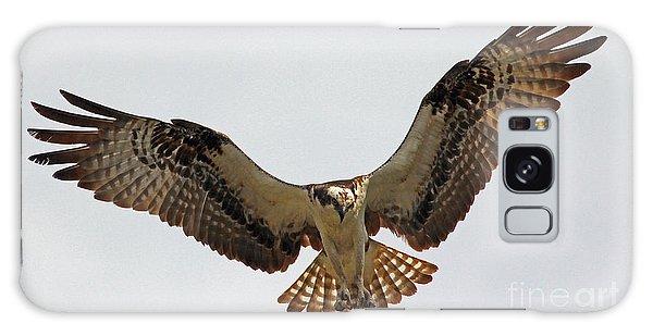 Osprey Spread Galaxy Case