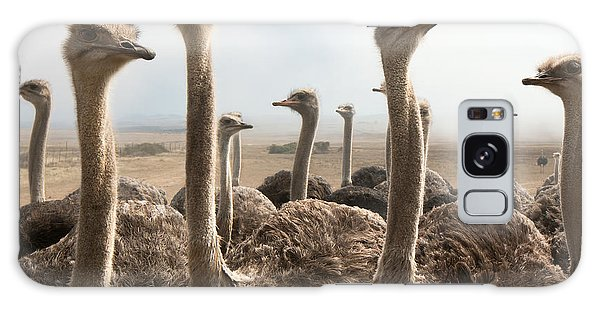 Bird Galaxy Case - Ostrich Heads by Johan Swanepoel