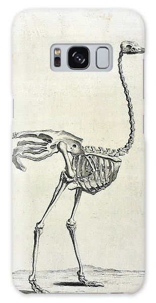 Ostrich Galaxy Case - Ostrich Skeleton by British Library