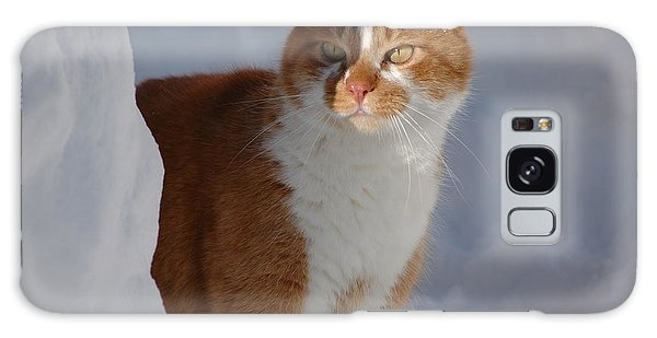 Galaxy Case featuring the photograph Otis by Christiane Hellner-OBrien