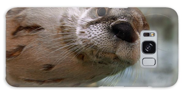 Otter Be Lookin' At You Kid Galaxy Case