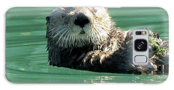 otter in Cordova Harbor Galaxy Case