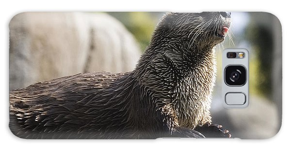 Otter Galaxy Case - Otter Sun Bathing by Michael Ver Sprill