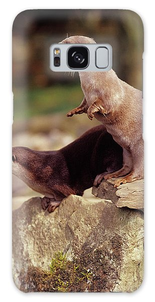 Otter Rock Galaxy Case - Otters by Chris B Stock/science Photo Library