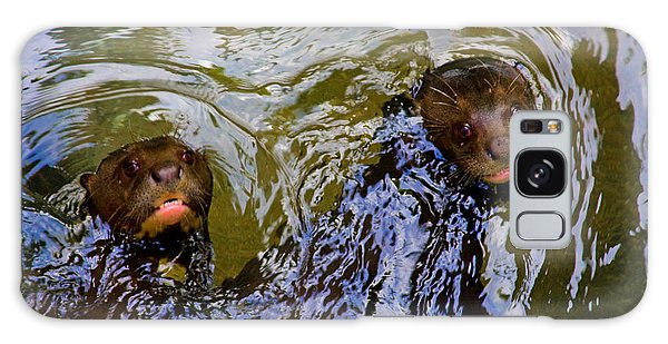 River Otter Galaxy Case - Otters Taking A Friendly Swimming  by Manuel Lopez