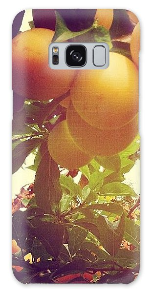 Orange Galaxy Case - Our Plum Tree Is Loaded This Year...any by Blenda Studio