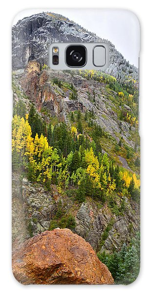 Ouray Canyon Fall Color Galaxy Case