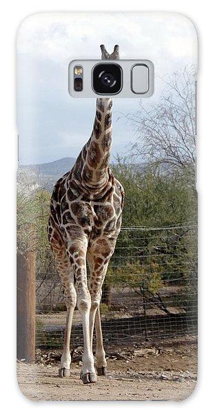 Out Of Africa  Giraffe 1 Galaxy Case