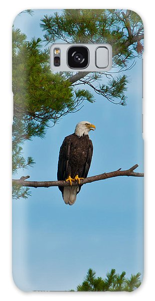 Out On A Limb Galaxy Case