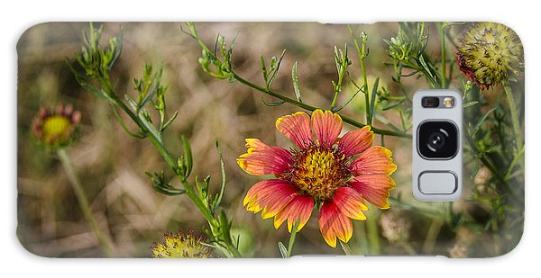 Outer Banks Wildflower Galaxy Case by Bradley Clay