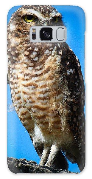 Owl 2  Galaxy Case