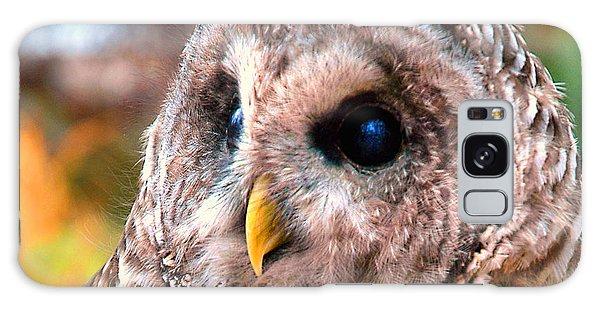 Owl Gaze Galaxy Case