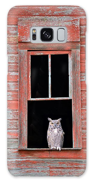 Owl Window Galaxy Case