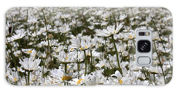 Ox Eye Daisies Galaxy Case