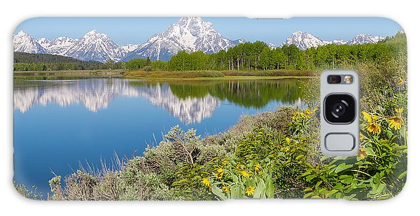 Galaxy Case featuring the photograph Oxbow Bend Wildflowers In Spring by Aaron Spong