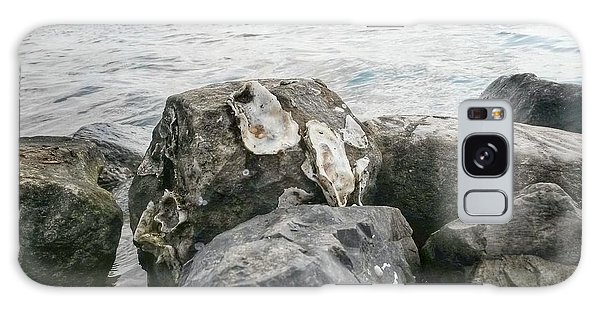 Oysters On The Rocks Galaxy Case