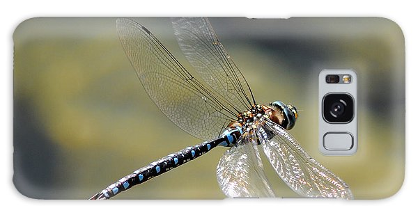 Paddletail Darner In Flight Galaxy Case by Vivian Christopher
