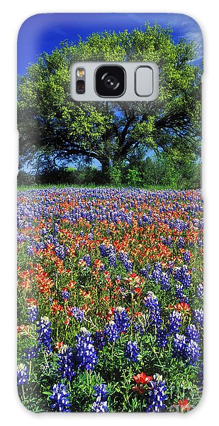 Southwest Usa Galaxy Case - Paintbrush And Bluebonnets - Fs000057 by Daniel Dempster