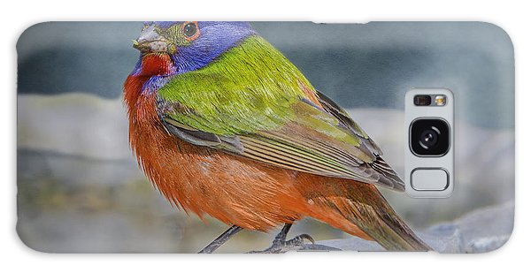 Painted Bunting In April Galaxy Case