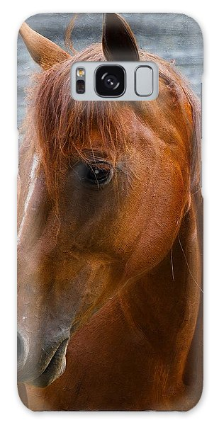 Painted Horse Galaxy Case by Diana Boyd