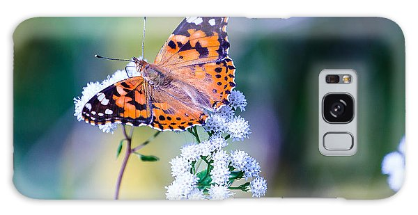 Painted Lady Butterfly 1 Galaxy Case