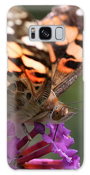 Painted Lady On Butterfly Bush Galaxy Case