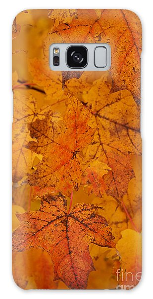 Painted Leaves Of Autumn Galaxy Case by Linda Shafer