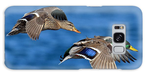 Pair Of Mallards In Flight Galaxy Case by Rodney Campbell