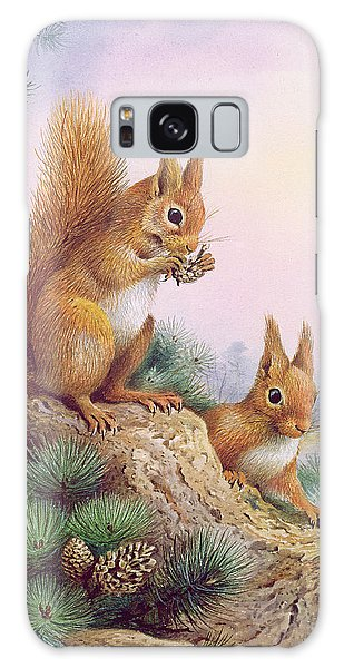 Pine Branch Galaxy Case - Pair Of Red Squirrels On A Scottish Pine by Carl Donner