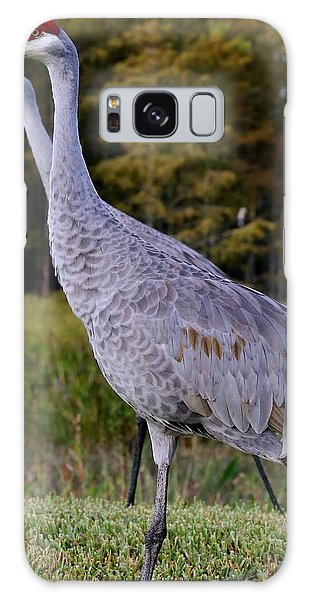 Pair Of Sandhill Cranes Galaxy Case