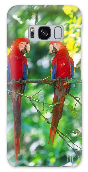Pair Of Scarlet Macaws Galaxy Case