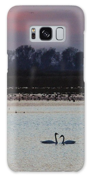Pair Of Swan At Sunset Galaxy Case