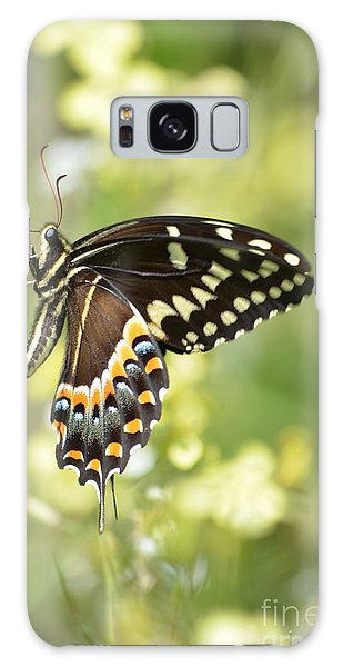 Palamedes Swallowtail 2 Galaxy Case by Kathy Gibbons