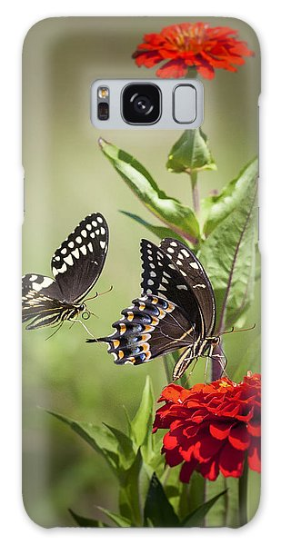 Palamedes Swallowtail Butterflies Galaxy Case
