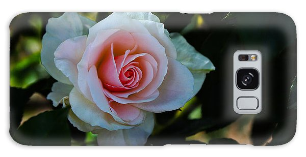 Pale Pink Galaxy Case by Richard Stephen