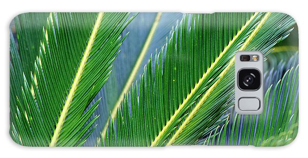 Palm Cycas Fronds Galaxy Case