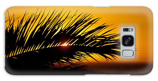 Palm Leaf In Sunset Galaxy Case