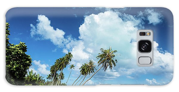 Islands In The Sky Galaxy Case - Palm Tree Along A Road by Panoramic Images