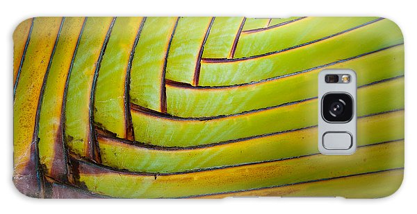 Palm Tree Leafs Galaxy Case