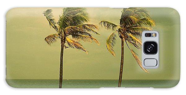 Palm Trees At Hallendale Beach Galaxy Case