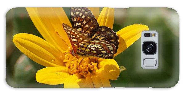Palmer's Metalmark Butterfly Galaxy Case