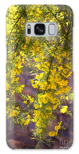Palo Verde Blossoms Galaxy Case