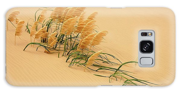 Dunes Galaxy Case - Pampas Grass In Sand Dune by Carl Bostek