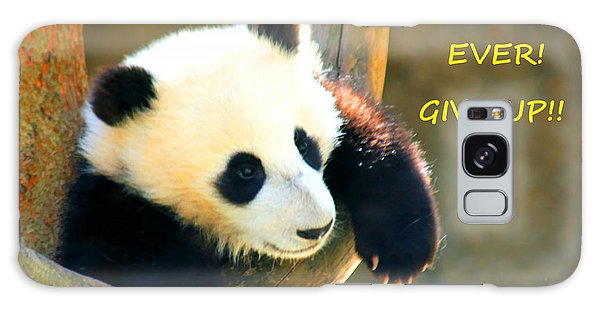 Panda Baby Bear Never Ever Ever Give Up Galaxy Case