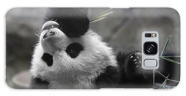 Panda Cub At National Zoo Galaxy Case