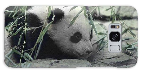 Panda Cub Bao Bao Galaxy Case