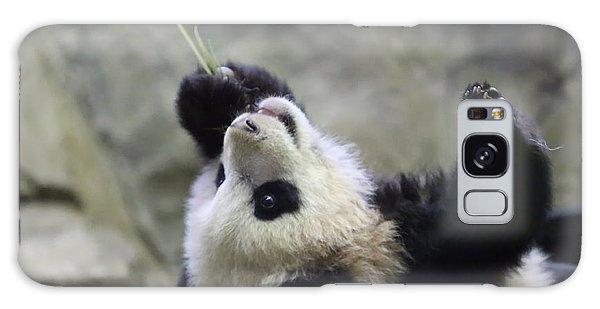 Panda Cub Galaxy Case