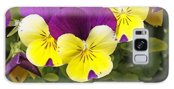 Pansies Galaxy Case by Denise Pohl